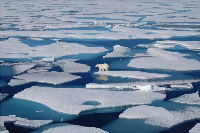Αρκτική: «Καμπανάκι» επιστημόνων από το λιώσιμο πάγων - Θα έχει συνέπειες 70 τρισ. δολαρίων