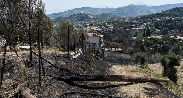 Φωτιά στην Αιγιάλεια: Κυβερνητικό κλιμάκιο στην Πάτρα την Τρίτη για την αποτίμηση των καταστροφών