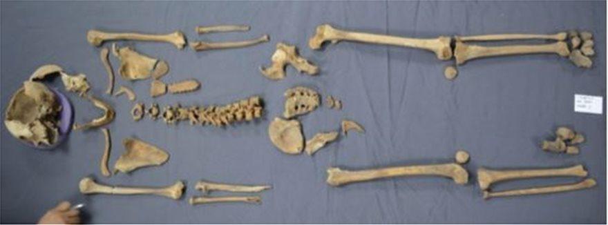 Αλεξάνδρεια: Σε δύο άντρες και μία γυναίκα ανήκουν οι σκελετοί που βρέθηκαν στην σαρκοφάγο (ΕΙΚΟΝΕΣ)