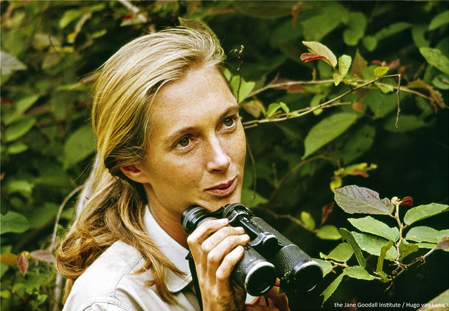Jane_Goodall_in_Tanzania__Copyright_the_Jane_Goodall_Institute_by_Hugo_Van_Lawick
