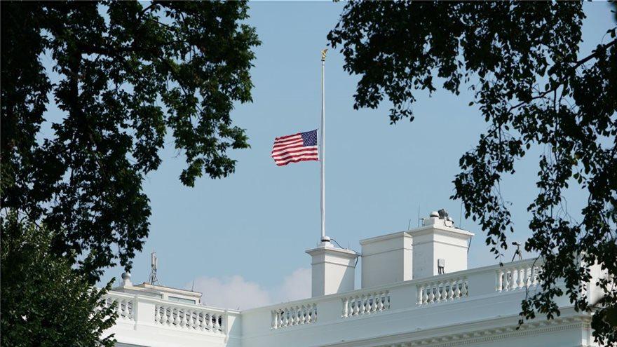 trump_flags