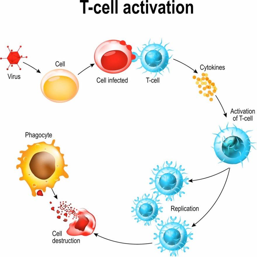 covid_immunity_pin1