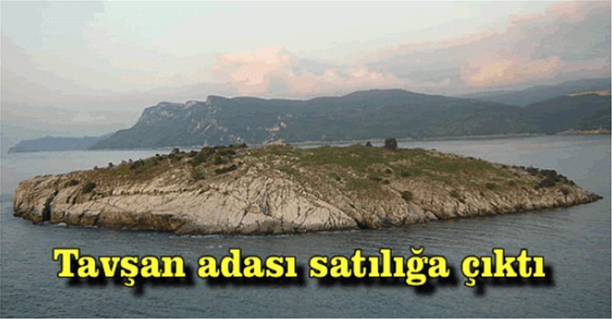 lagouses-77