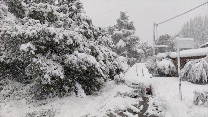 Χιόνι στην Εκάλη (1)