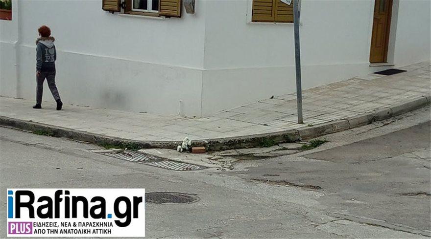 troxaio_rafina28022021_louloudia-3