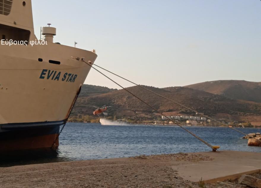 evoia_enaeri
